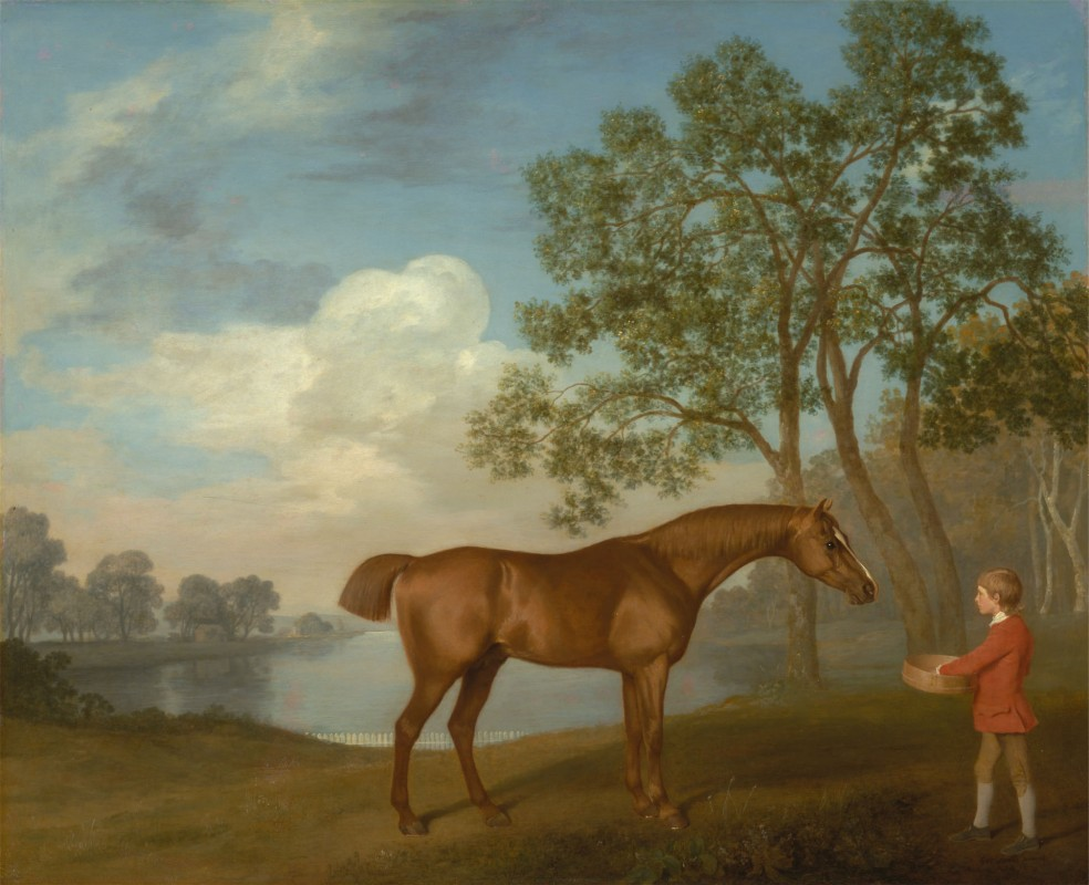 Horse with stable boy in red jacket